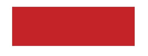 bird-logo-500